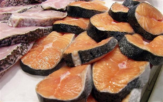 salmon_2707460b