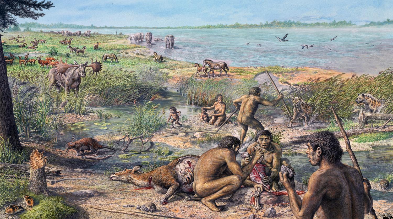 Nos ancêtres proto-humain (d'après J.Henry)