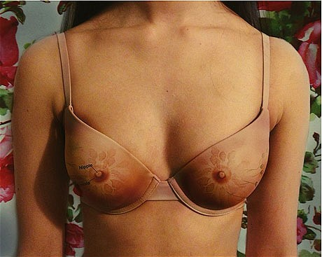 female_anatomy_bra_2982338c