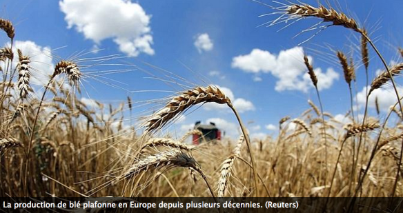 Capture d'écran 2015-02-17 à 15.26.33